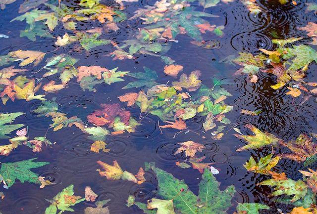 آغاز بارشهای پاییزی از اواخر هفته در همدان/کاهش دمای ۵ درجه ای