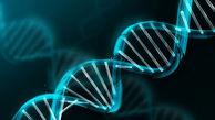 اختصاص ۴۰ میلیون تومان به آزمایشات ژنتیک مددجویان شهرستان کبودرآهنگ