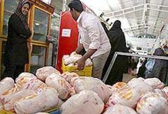 توقیف و معدومسازی 300 کیلو سنگدان منجمد مرغ