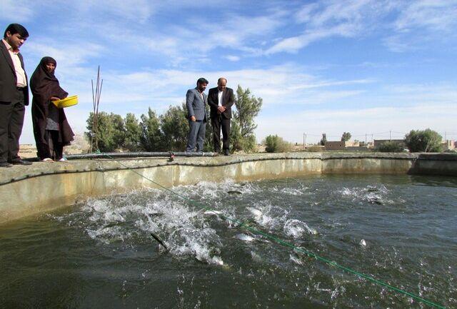 آغاز فعالیت صید و صیادی در منابع آبی آذربایجان غربی