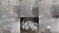 حدود ۴۹۵ شی تاریخی از باند حفار غیر مجاز در رامهرمز کشف شد