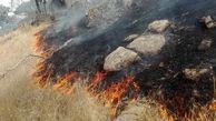 آتش دست بردار ارتفاعات کهگیلویه و بویراحمد نیست!