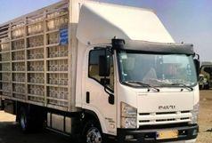 توقیف کامیون حامل مرغ زنده در نهاوند