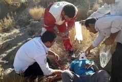 انجام 20 ماموریت امدادی برای 956 نفر حادثه دیده