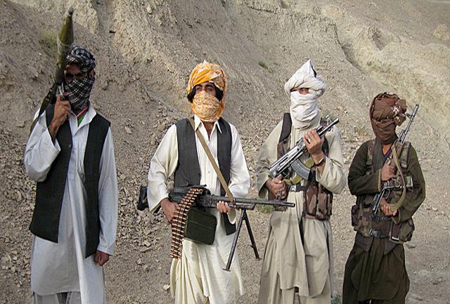۱۳۵ عضو گروه طالبان کشته شدند
