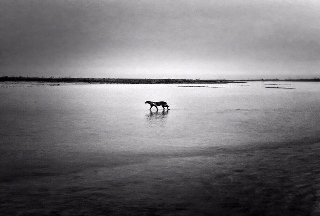 «واقعیت شخصی» ۱۱ عکاس به بندرعباس رسید