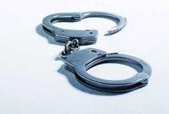 انهدام باند سرقت احشام در شهرستان رضوانشهر