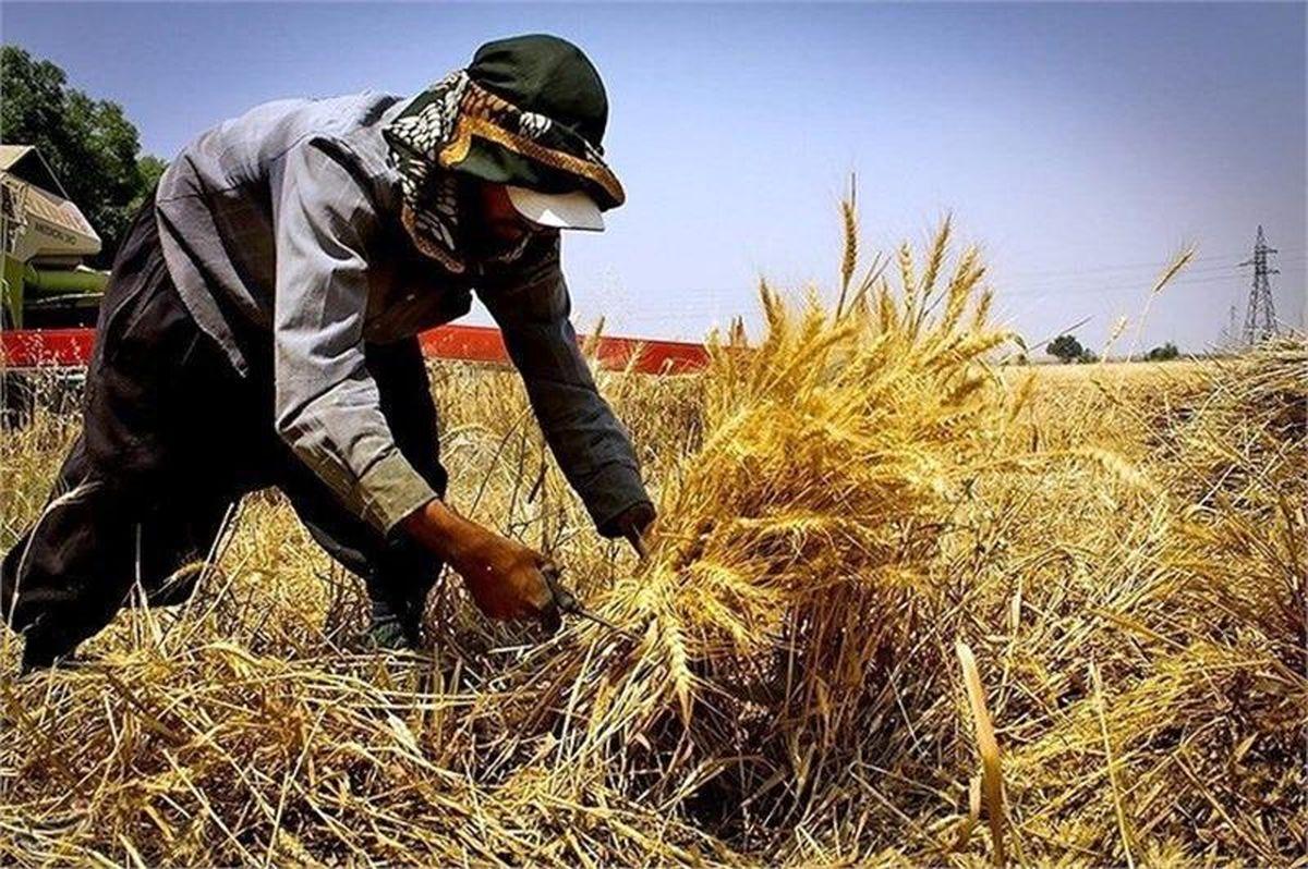 رشد 176درصدی پرداخت زکات در بهار امسال/پرداخت 3 میلیارد تومان زکات در خراسان شمالی