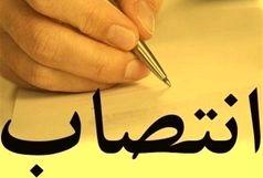 انتصاب سرپرست هیئت مرکزی گزینش شهرداری تهران