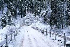 برف تهران را سفیدپوش کرد+ فیلم