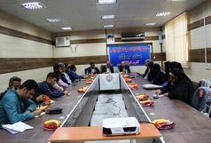 رئیس هیئت قایقرانی استان هرمزگان انتخاب شد