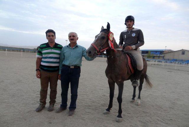 کسب مقام دوم علی مرادی در مسابقات سوارکاری استقامت قهرمانی کشور