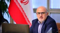 تاکید معاون وزیر نفت در امور پتروشیمی بر حمایت از ساخت داخل