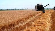 پیشنهاد بسته جامع تامین امنیت غذایی پایدار به دولت در شرایط خشکسالی