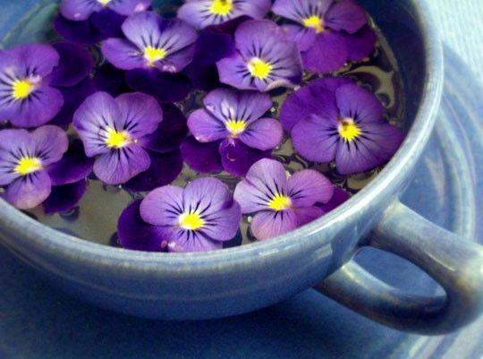 این گیاهان جادویی را مصرف کنید و راحت بخوابید!