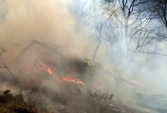 اطفا و مهار حریق در تمامی مناطق استان گیلان