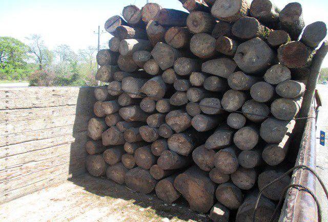 کشف 8 تن چوب قاچاق در آستارا