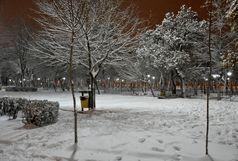 آخر این هفته منتظر برف و باران باشید