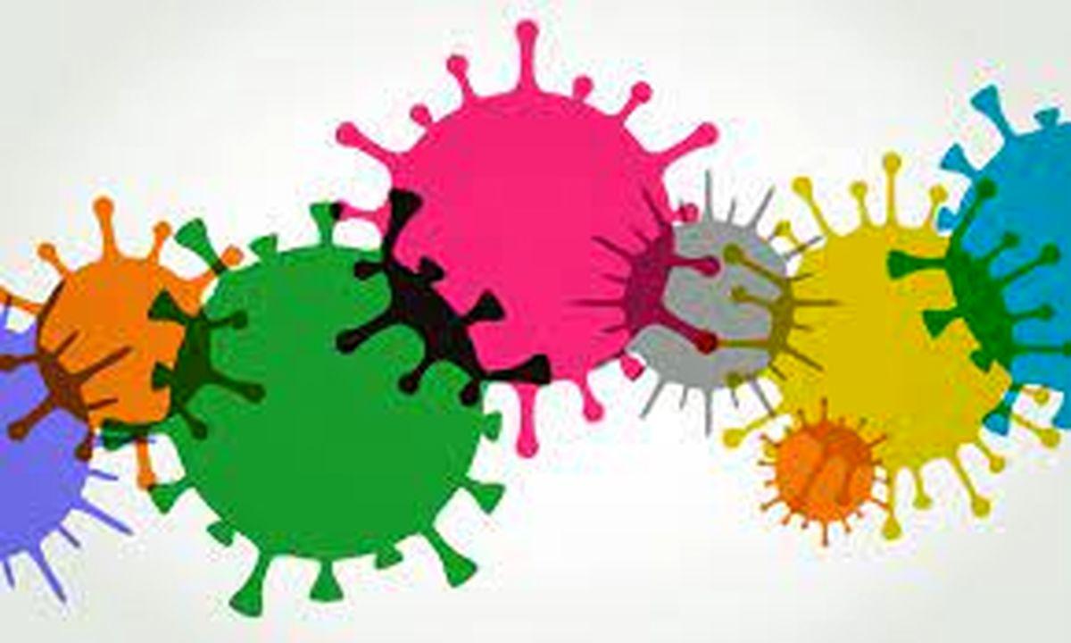 آیا واقعا واکسن آنفولانزا از کرونای شدید هم جلوگیری می کند؟