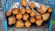 توقیف۱۶ دستگاه خودروی حمل چوب قاچاق در شهرستان لردگان