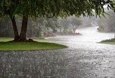 بارش پراکنده باران از فردا در انتظار بوشهریها