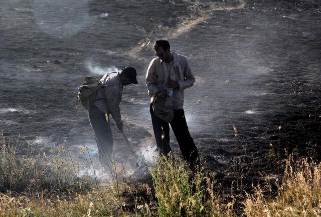 ۹۵ درصد آتشسوزی  مراتع البرز عامل انسانی دارد