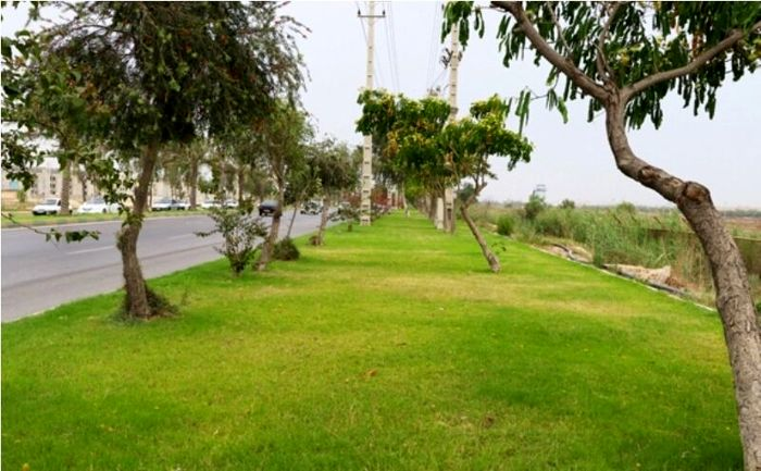 ۳۵ هکتار فضای سبز در شهرکهای صنعتی بوشهر ایجاد شد