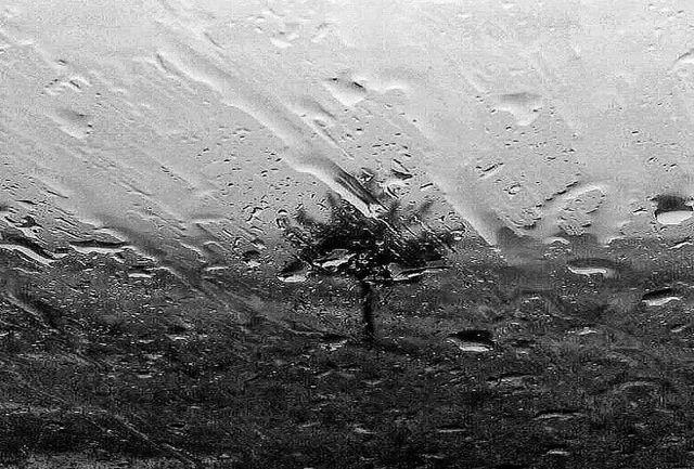 آغاز بارش برف و باران در کشور از چهارشنبه 24 دی 99