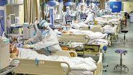 9 بیمار مبتلا به قارچ سیاه در بیمارستان ولایت بستری شده اند