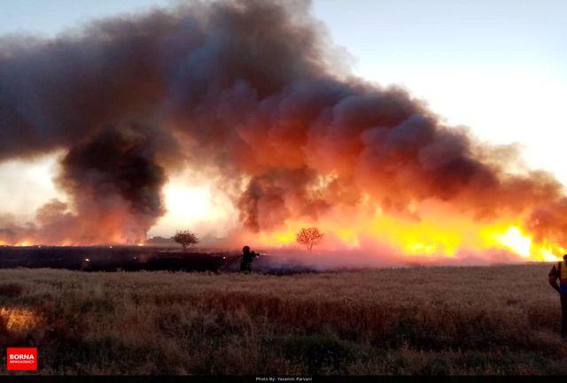وقوع ۳۰ فقره آتش سوزی در جنگلهای مازندران