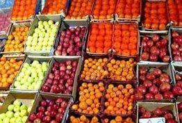 شب یلدا میوه گران نمیشود/ افزایش مقطعی قیمت انار و هندوانه