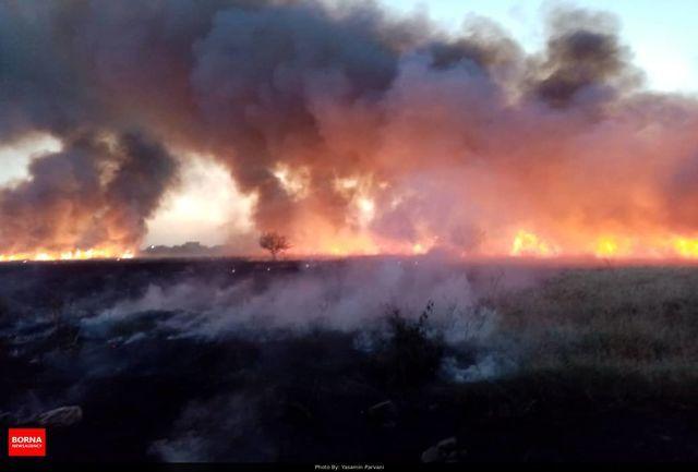 ارجاع پرونده های عاملین آتش سوزی به مراجع قضایی/ ۲۵ هکتار از اراضی استان تهران از ابتدای سال طعمه حریق شدند/ هشدار برای نابودی برخی گونه های گیاهی