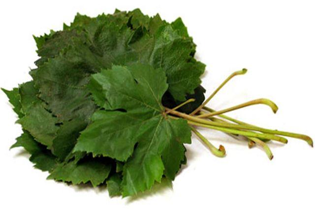 گیاهی که یک تنه سرما خوردگی و آنفلوانزا را حریف است