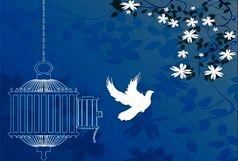 آزادی 30 زندانی با محکومیت مالی و غیر عمد به مناسبت عید غدیر