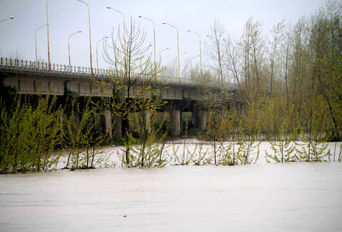 طغیان رودخانه سفیدرود