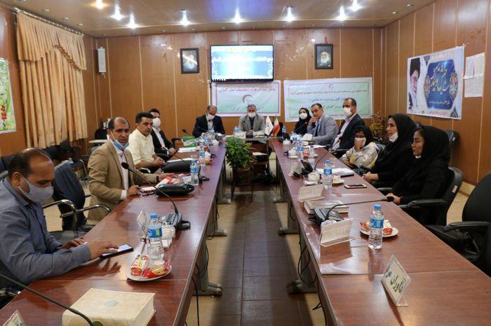 علی عرفانیان به عنوان رئیس هیئت ژیمناستیک استان انتخاب شد