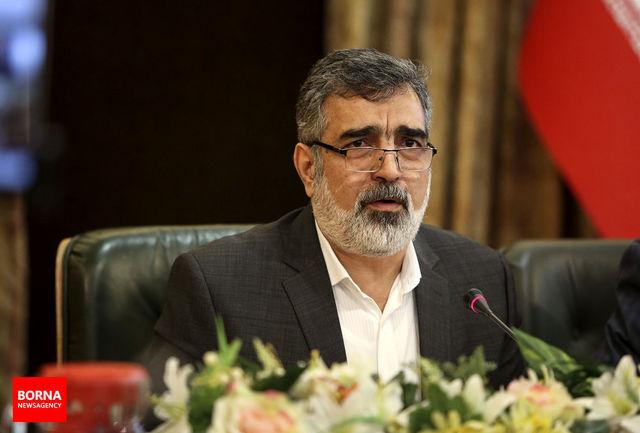 ایران با استانداردهای دوگانه مشکل دارد