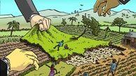 گرانی زمین مهمترین عامل زمین خواری در استان همدان است