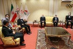 دیدار سفیر ژاپن با صالحی امیری