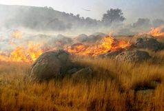 آتش به جان جنگل های بخش الوار گرمسیری افتاد