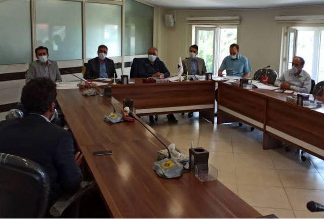 خوشه فرآوری محصولات زیتون در قزوین راه اندازی میشود