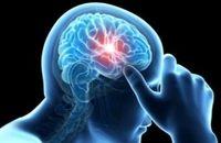 هشت باور عامیانه در مورد مغز انسان