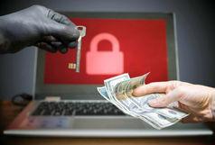 حمله هماهنگ هکرها به 23 نهاد دولتی