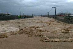 آخرین آمار تلفات سیلاب اعلام شد