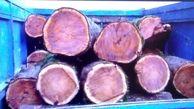 کشف ۲ تن چوب قاچاق در شهرستان بویراحمد