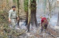 47 هکتار از جنگلهای پارک ملی گلستان طعمه حریق شد