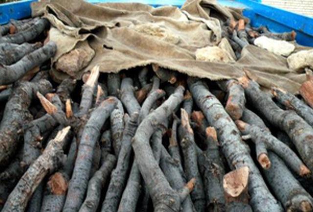 بسته شدن راه قاچاق چوب در رودان