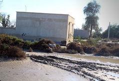سیل اخیر به ۲۰۰ منزل مسکونی کرمان خسارت وارد کرد