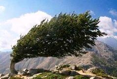 هشدار زرد هواشناسی نسبت به وزش باد بسیار شدید همراه با گرد و خاک