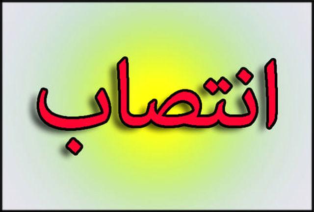 معاون امور توسعه و مهندسی شرکت ملی نفت ایران منصوب شد